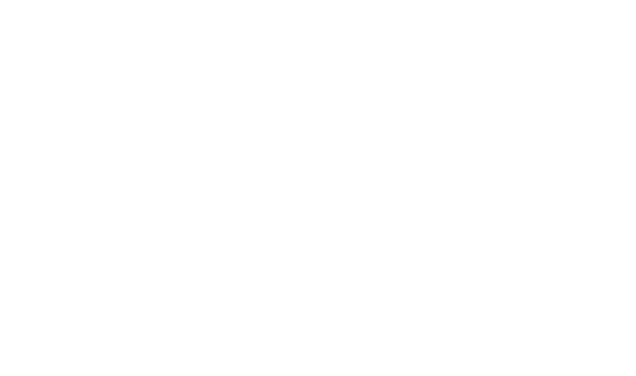 BDB Informatica